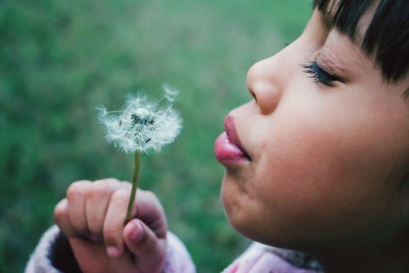 Close-up of girl holding dandelion flower