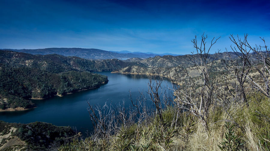 Aerial view of Lake Berryessa from the Blue Ridge Trail, Stebbins Cold Canyon, on a sunny day, featuring the surrounding blue oak woodland after the 2015 wragg fire Lake Berryessa Blue Ridge Trail Stebbins Cold Canyon Napa County Ca Water Scenics - Nature Tranquil Scene Tranquility Tree No People Sky Plant Beauty In Nature Nature Lake Blue Non-urban Scene Mountain Reflection Day Outdoors Land USA California