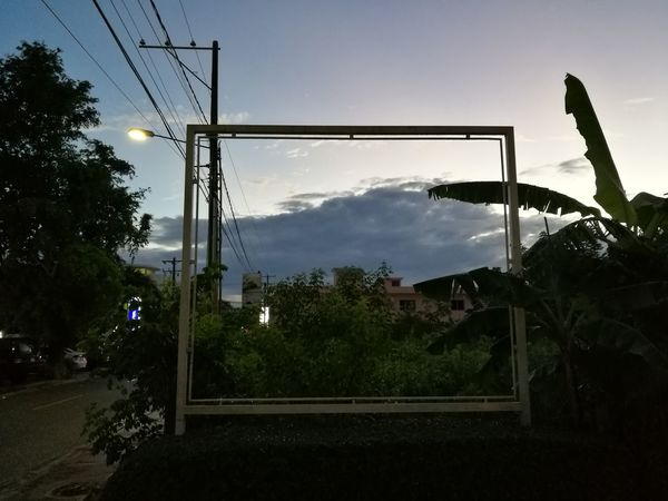 Hors champ Frame Out Of Frame Nature Hors Champ Outdoors No People Tree Cloud - Sky Sky Day Picoftheday Dominican Republic Republica Dominicana Road árbol Photooftheday Republicadominicana Beauty In Nature Plant Nature Tree Palm Tree Frame Frame In Frame Framed By Trees