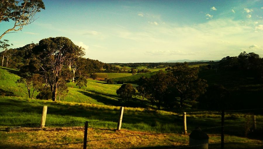 Bucolic country afternoon scenery! Walking Around Relaxing Enjoying The Sun Escaping