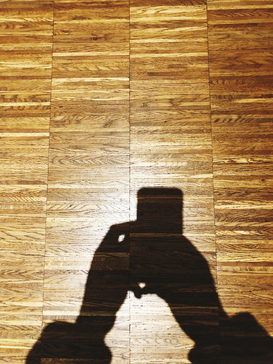 HIGH ANGLE VIEW OF PERSON SHADOW ON HARDWOOD FLOOR