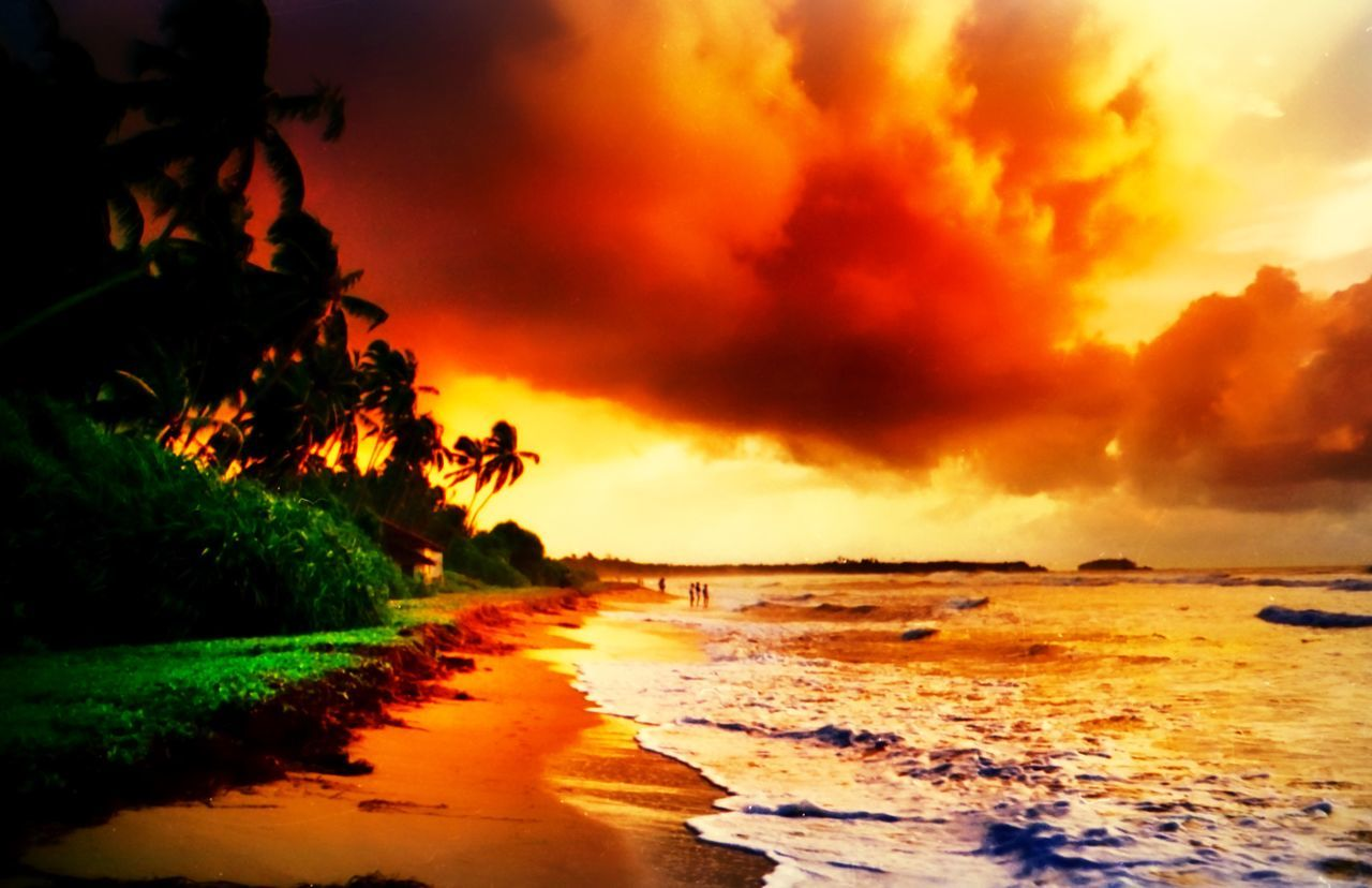 sunset, sea, beauty in nature, scenics, sky, orange color, nature, beach, cloud - sky, tranquil scene, tree, tranquility, no people, silhouette, outdoors, water, palm tree, horizon over water, day