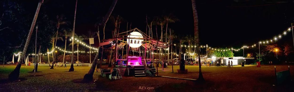 Darwin festival Night Illuminated Architecture Tree Arts Culture And Entertainment Built Structure Park Park - Man Made Space Lighting Equipment