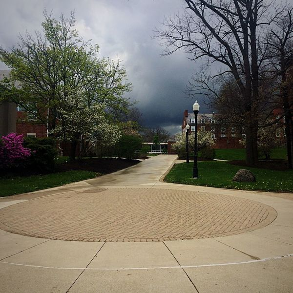 The calm before the storm. Hello World Enjoying Life Granville Trees Denison University Go Outside First Eyeem Photo