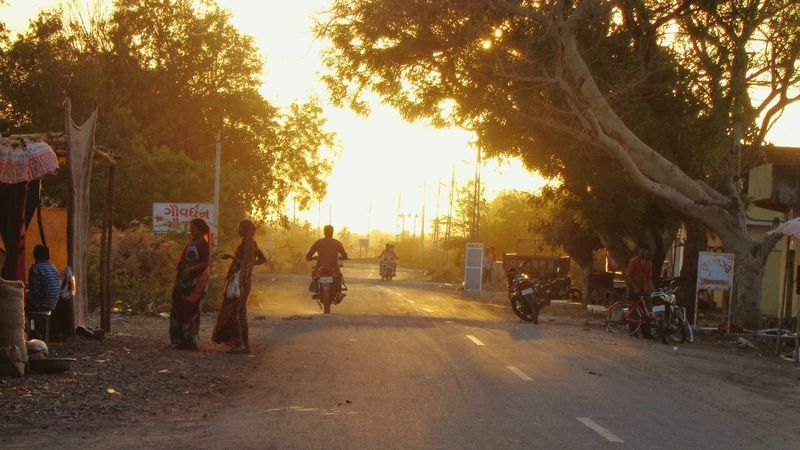 Long Goodbye Tree Street Sunset Outdoors Real People Land Vehicle Men Transportation Road Nature Large Group Of People First Eyeem Photo Likeforlike No People Silhouette Tree City Day People Low Exposure at Vadia Vadiya Gujarat India The Street Photographer - 2017 EyeEm Awards Live For The Story EyeEmNewHere