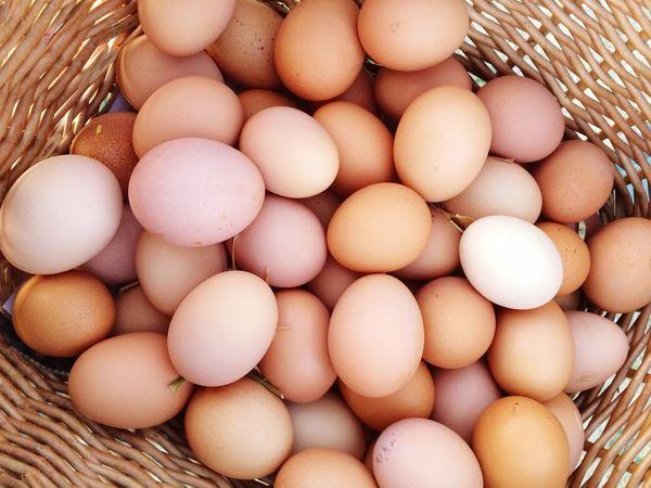 Egg Basket Animal Egg Food Food And Drink Raw Food Fragility Egg Carton Abundance Freshness Healthy Eating No People Indoors  Close-up Day