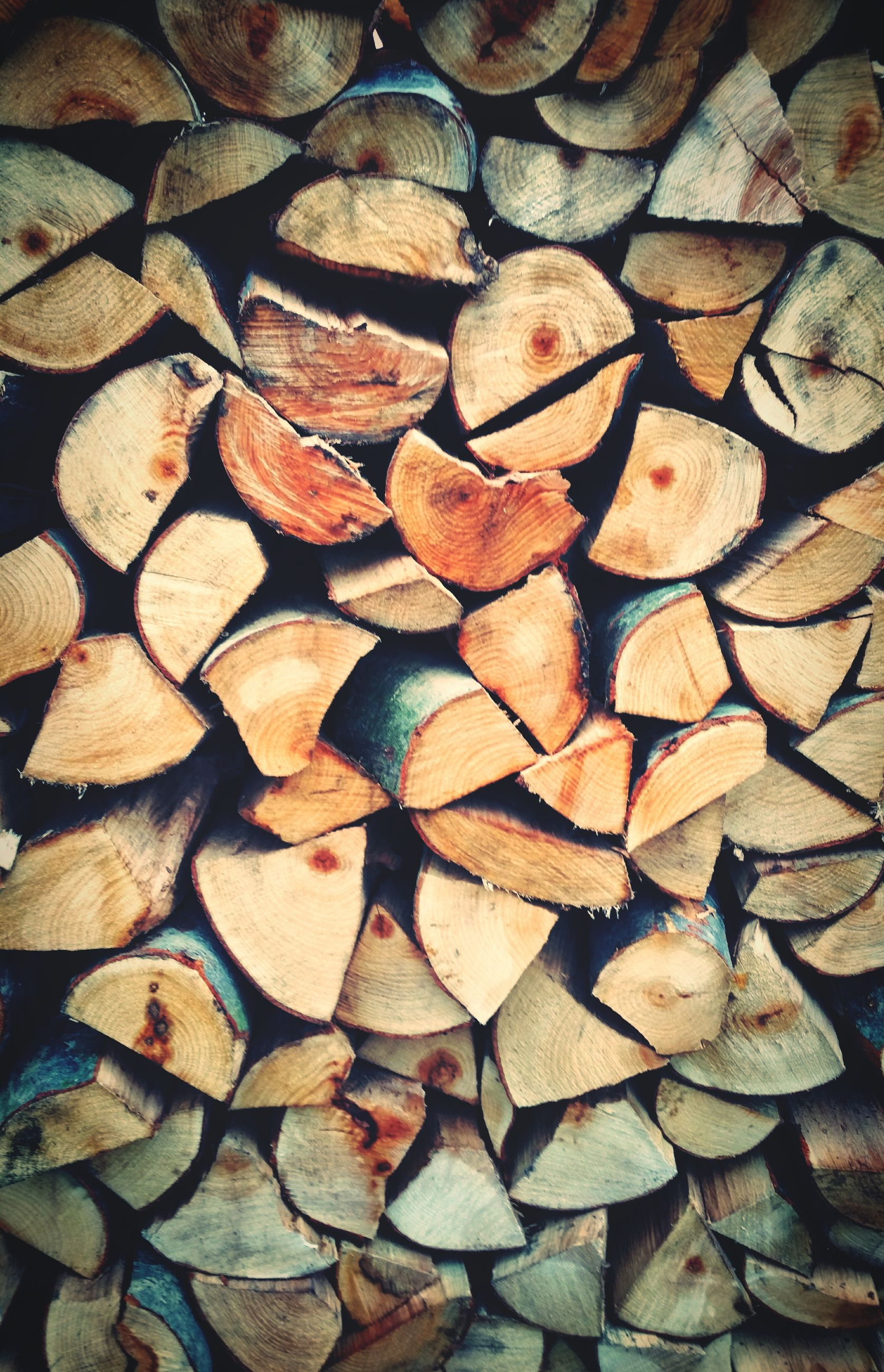full frame, backgrounds, abundance, deforestation, lumber industry, large group of objects, log, repetition, firewood, day, woodland, no people