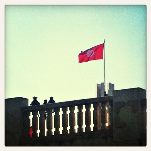 #tunisianflag #tunis #تونس #tunisia #Tunisie #RépubliqueTunisienne #1957 #2013 #25juillet #25thjuly #célébration #fêteNationaleTunisienne Tunisian Flag
