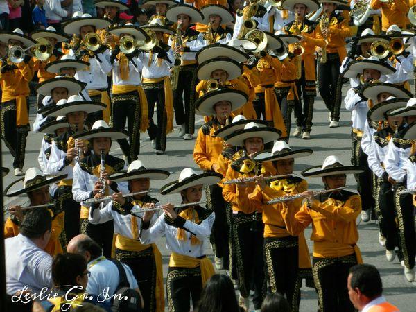 Desfile Musica Guadalajara Jalisco Mexico Mexico_maravilloso Sombreros Streetphotography Leslie_Gr_In Streetphoto_color