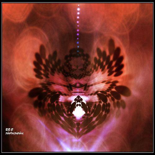L'araignée solaire Rofphotographie Ipadmini4 Paris IPhoneography Soleil Sun ☀