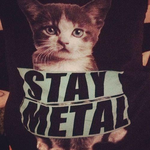 Love this shirt too much. Stay metal Missmayi