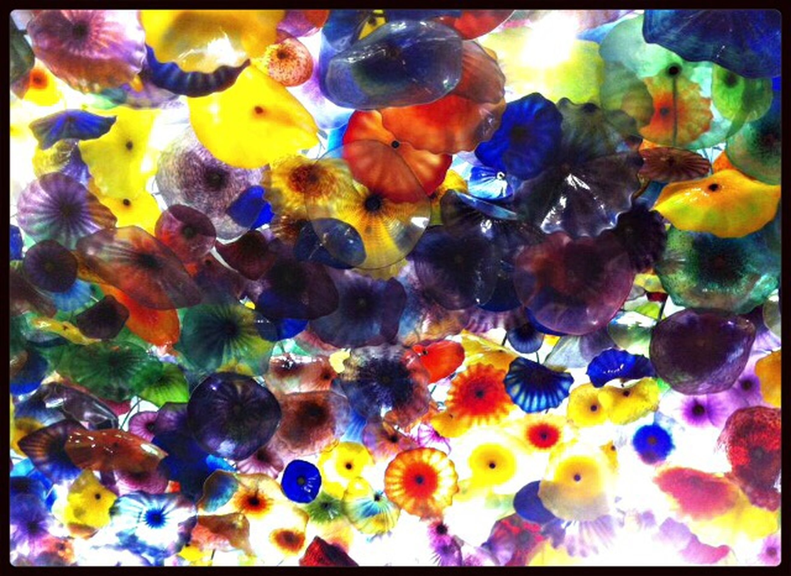 transfer print, auto post production filter, multi colored, full frame, backgrounds, indoors, colorful, blue, abundance, variation, close-up, pattern, no people, large group of objects, yellow, vibrant color, high angle view, underwater, still life, fish