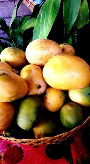 Manggos from