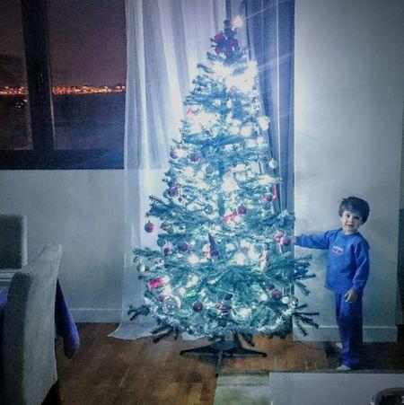 Xmas Tree Xmas Xmas Decorations Xmastime Xmas Lights  Arbol De Navidad Luces De Navidad