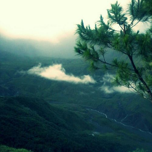 Jika kau bertanya bagaimana menemukan Tuhan, pejamkan mata mu sejenak, dan bukalah saat kau tiba di puncak. Alam semesta menjadi saksi betapa Ia MahaKuasa Puncak  Talung Ramma GunungBawakaraeng Gowa sulawesiselatan indonesia VisitIndonesia Village Lembanna Nature Beautiful Instanature DescribeIndonesia Culture State Nation Adventure