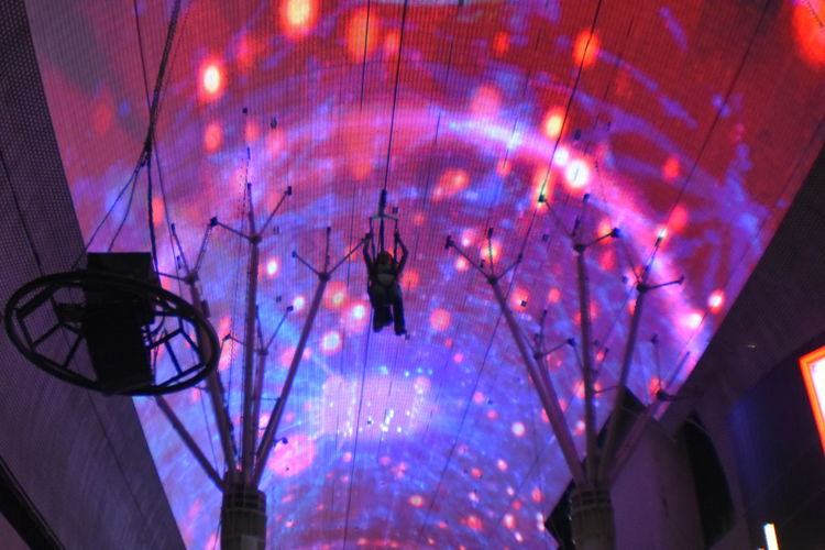Freemont Street Experience Zipline Illuminated Neon Multi Colored Tree Purple Arts Culture And Entertainment Architecture Sky Summer Exploratorium