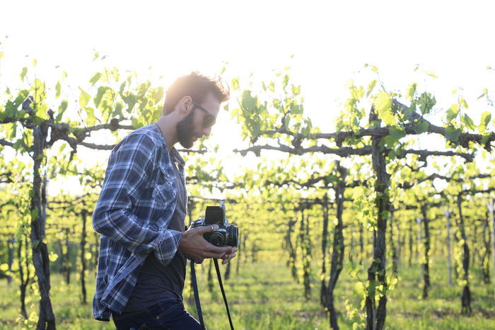 Adult Camera - Photographic Equipment Casual Clothing Day Leisure Activity Lifestyles Men Nature One Man Only One Person Only Men Outdoors People Photographer Photographing Photography Themes Real People Standing Technology Tree Vines Vineyard Wireless Technology Young Adult