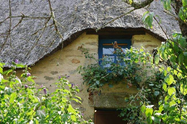 Chaumière de Kerhinet - Architecture Built Structure House Plant Outdoors Growth Building Exterior Nature Roof French House Window Architecturelovers Old House Travel Destinations Village Old Town Cottage Bretagnetourisme Bretagne Architectureporn Architecturephotography Old Architecture Architecture