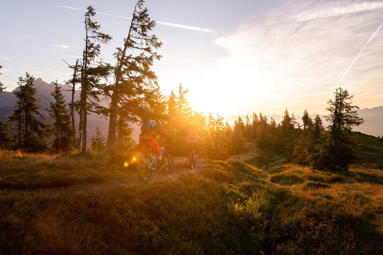 Man riding bicycle by trees against sky during sunset