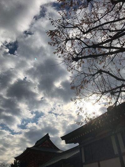 冬至 #冬至 #穴八幡宮 Low Angle View Architecture Built Structure Sky Building Exterior Nature