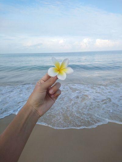 Flower in the hand by the sea Beach Wave Beauty Coastline Tropical Flower Beach Holiday Rocky Coastline Bird Of Paradise - Plant Coastal Feature Sunbathing Spa Marram Grass Hibiscus Countryside Seascape Shore