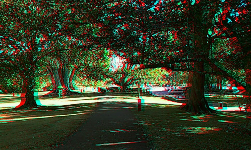 3D Stereoscopic Anaglyph red/blue 3D glasses required to see depth. 2015 02 28