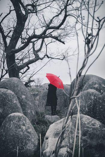 Art Is Everywhere EyeEmNewHere Weather Rain Umbrella Red Nature EyeEm Best Shots Beauty In Nature Outdoors Portrait Mood