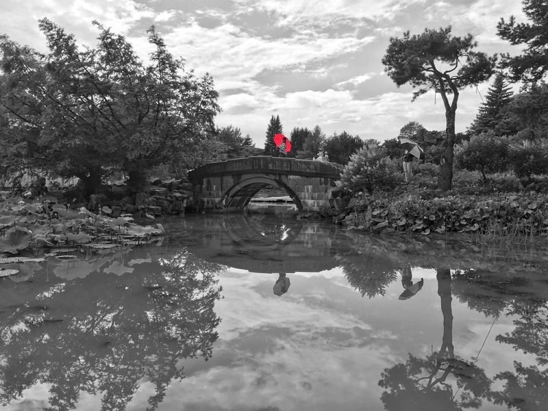 Montreal botanical Garden!! Check This Out Taking Photos Taking Pictures Iphonephotography Bridge Botanical Gardens Water Reflections Redumbrella