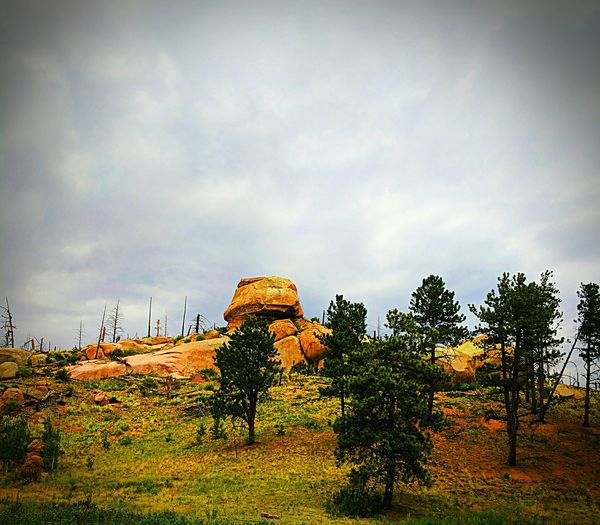 Beauty Around Me Freshness Beauty Eye Em Nature Lover No People Nature Naturelover Mypointofview Colorado Sky Google Pixel XL Rock Formation Trees And Nature