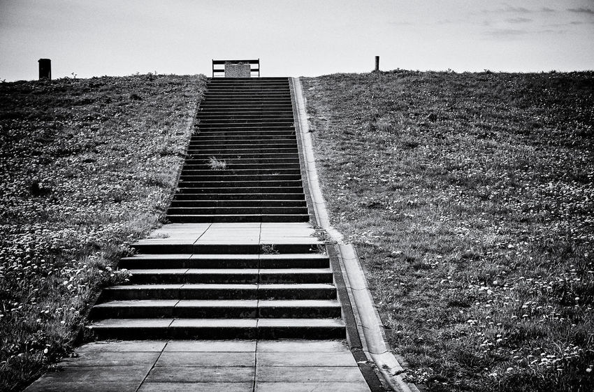 TO THE SEA: Stairs to Gooimeer. Overgooi, Almere-Haven, Flevoland, The Netherlands. Daisies Dandelions Architecture Building Building Exterior Built Structure Day Direction Field Footpath Growth History Nature No People Old Outdoors Plant Sky Staircase Steps And Staircases The Past The Way Forward