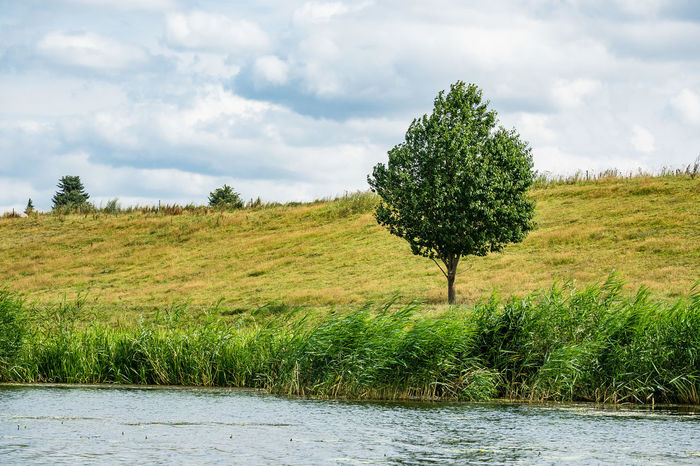 Landscape on the river Peene in Germany. Holiday Mecklenburg-Vorpommern Peene Beauty In Nature Day Idyllic Landscape Loitz Nature No People Outdoors River Scenics Sky Tourism Travel Destinations Tree Vacation Water