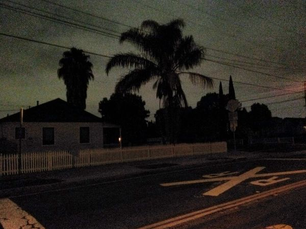 Late Night Bright Night Silhouettes Silhouette_collection Tree Silhoettes Picket Fence Railroad Crossing Suburbia Nightscape Nightscape Night Photography