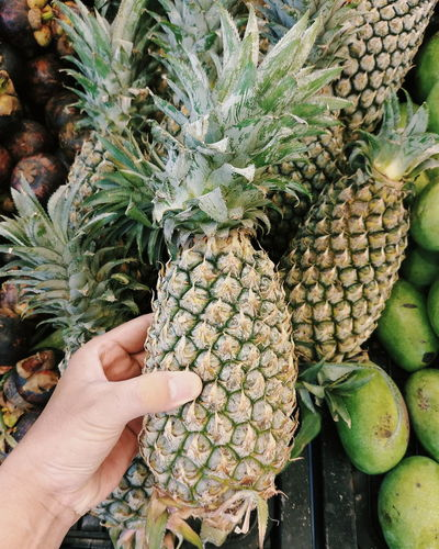 pineapple Fruit Close-up Close Up Supermarket Market Fruits Tropical Fruits Pineapple Hand Body Part Thumb Holding Spike Spikes