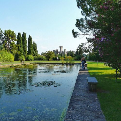 Mantova Parco Sigurta' Lombardia Lombardia_super_pics Tree Water Reflection Growth Nature Green Color Day Outdoors Clear Sky Built Structure Sky Beauty In Nature No People Grass Architecture EyeEm Gallery Travel Destinations EyeEmBestEdits EyeEm Best Shots EyeEmBestPics Eye4photography