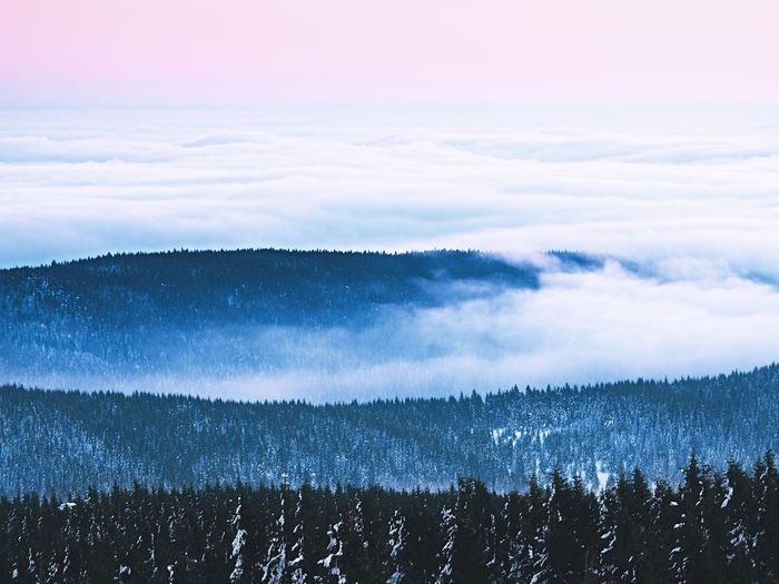Inverse weather in mountains, shinning fog. misty valley. peaks of mountains above creamy mist.