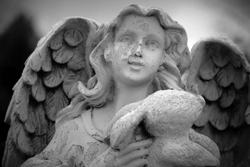 Cemetery in Prescott, AZ Prescott, AZ Angel Statue Cemetery Beautiful Old First Eyeem Photo