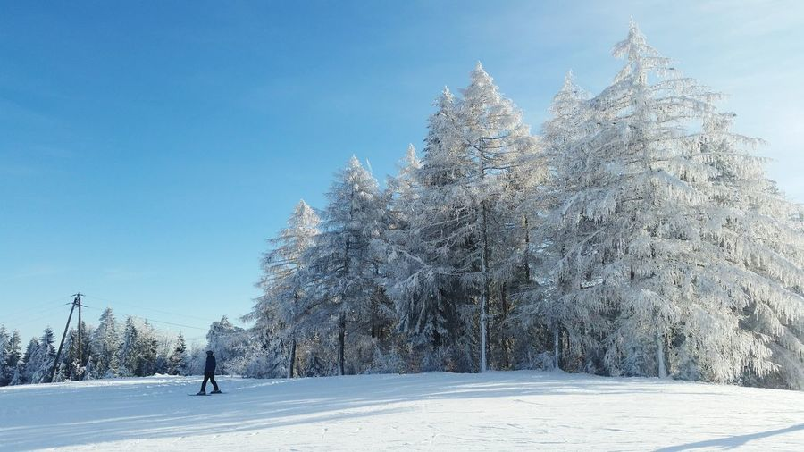 Snow Cold Temperature Nature Outdoors Winter No People Sky Tree Day Beauty In Nature Freshness Blue Men Cloud - Sky Exploration Snowboarding People