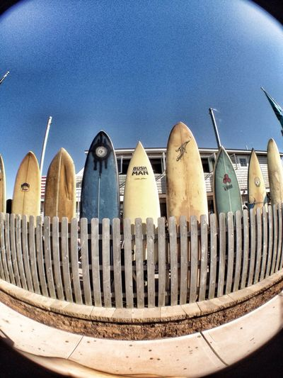 Surfing paradise!