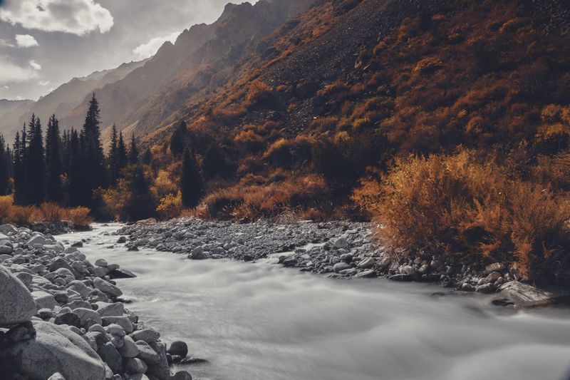 """""""River flows in"""