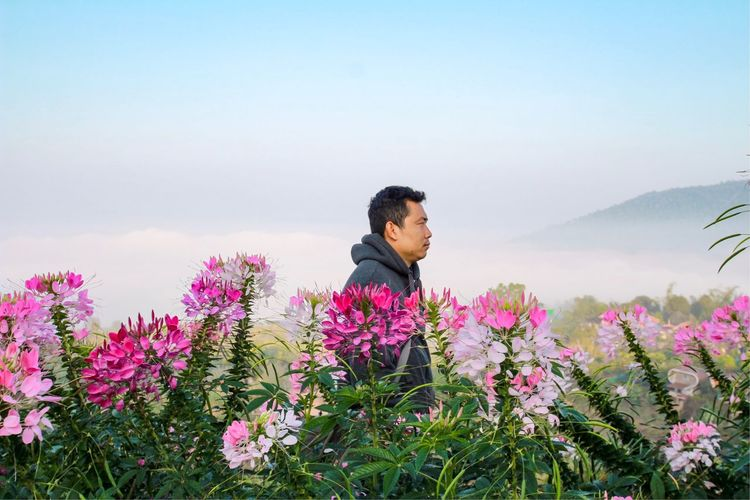 One man beside pink flowers and sea fog Mountain Sky Young Adult Clear Sky Tranquility Day Scenics Leisure Activity Tranquil Scene Field Outdoors Lifestyles Mid Adult Plant Real People One Person Growth Beauty In Nature Nature Flower EyeEm Selects Sea Fog