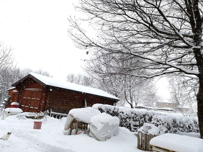 Total white ⚪❄️ EyeEm Best Shots Tree Molise EyeEm Nature Lover EyeEm Selects Eye4photography  EyeEm Winter Snow Mountain Totalwhite Snow House