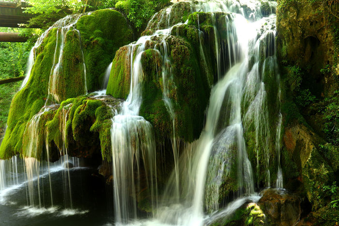 Waterfall Scenics - Nature Long Exposure Beauty In Nature Motion Water Flowing Water Rock Blurred Motion Rock - Object Tree Environment Solid Forest Nature Land Flowing Moss Plant No People Outdoors Rainforest Falling Water Power In Nature Running Water