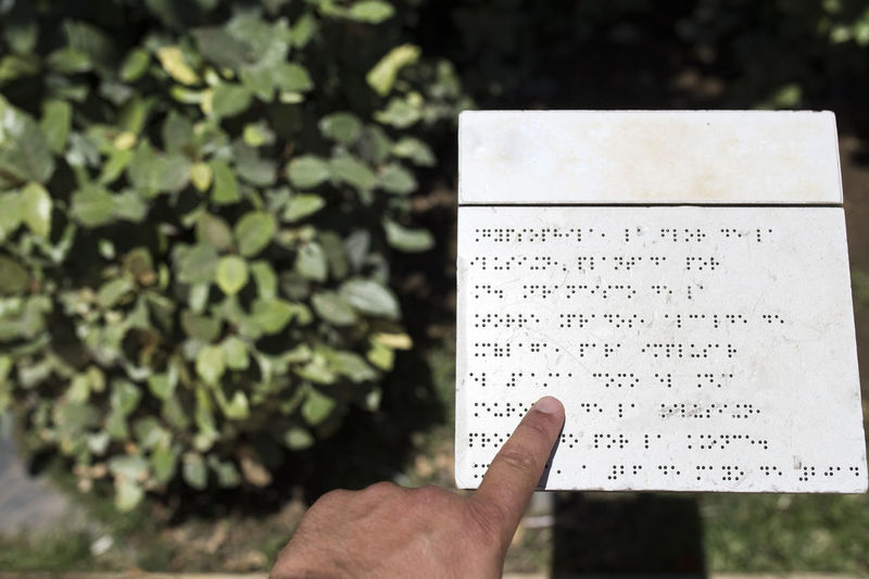 Cropped image of blind person hand reading book by plant