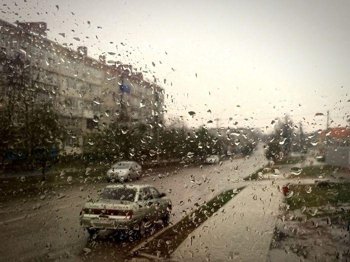 дождь не помеха