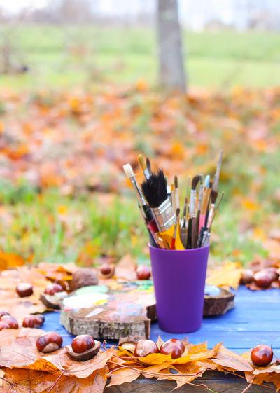 Autumn Brush