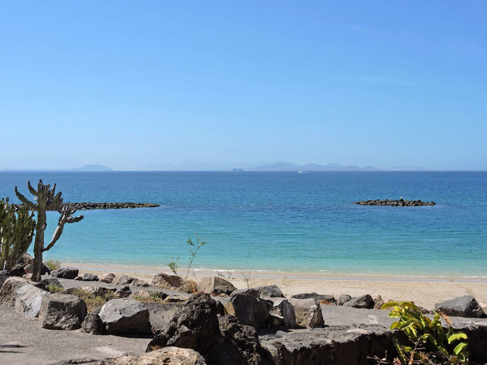 Beach Beauty In Nature Blue Blue Sky Cactus Canary Islands Clear Sky Day Horizon Over Water Lanzarote Nature Outdoors Playa Blanca Sea Sky SPAIN Tranquility Travel Destinations Water