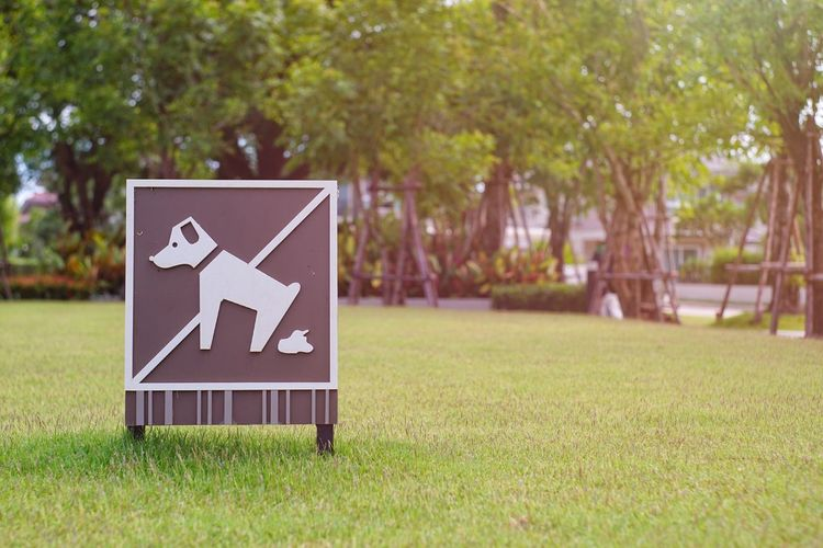 Close-up of sign on grass