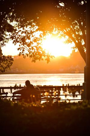 Sunset City Park Sunset_collection Hudson River Hudson River Greenway Water Sunset Sky Tree Silhouette Beauty In Nature Plant Outdoors Leisure Activity Reflection Sunlight Orange Color Nature Scenics - Nature Tranquility Tranquil Scene Sea Sitting Real People Land