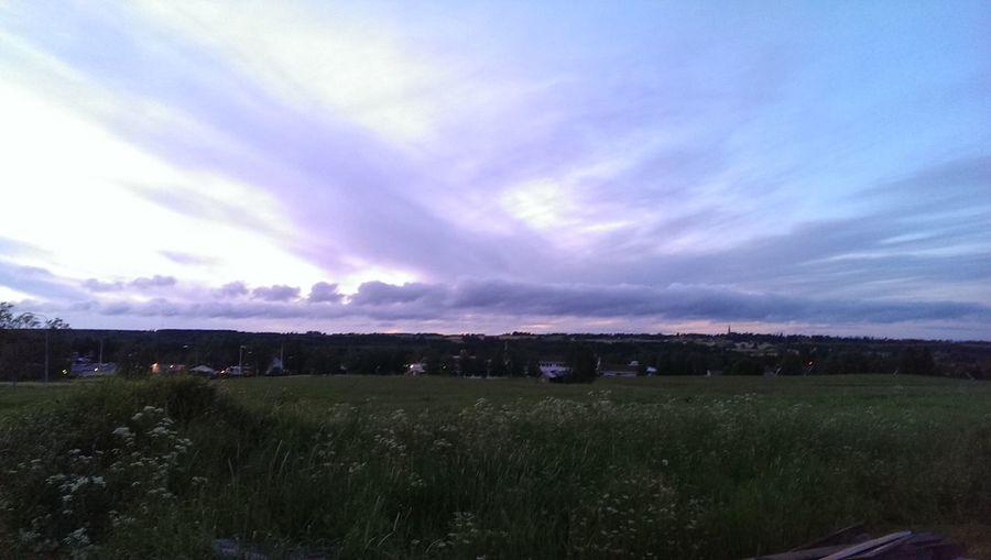 Midsummer in Jamtland Nature Landscape