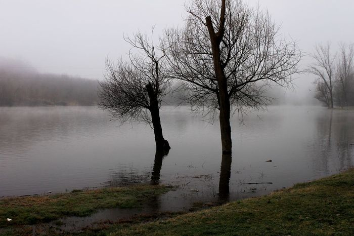 Beauty In Nature Extreme Weather Fog Idyllic Lake Landscape Mist And Trees Nature No People Outdoors Reflection Tranquil Scene Tranquility Tree Water